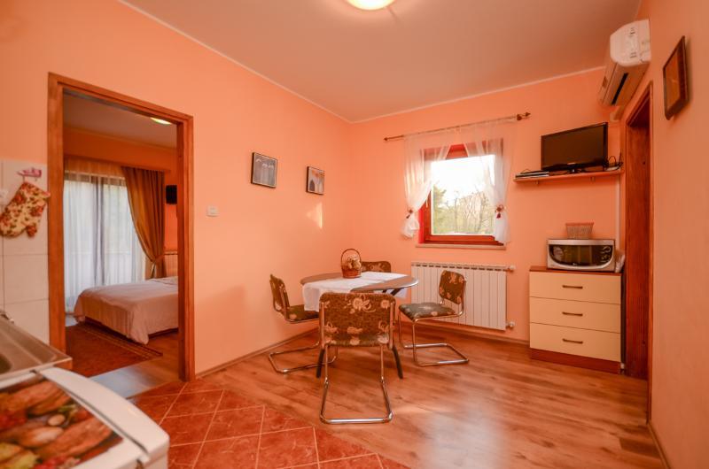 Apartments Stjepan - 75851-A2 - Image 1 - Labin - rentals