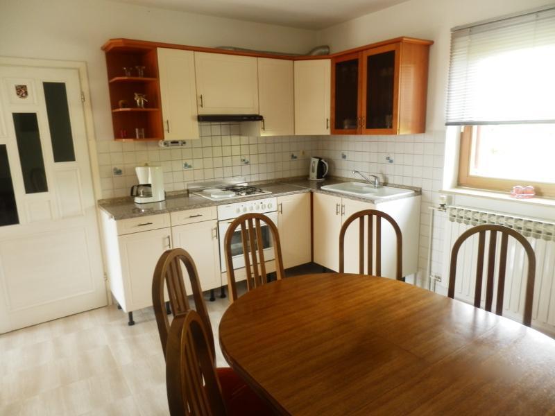 Apartment and Room Stipe - 81141-A1 - Image 1 - Drvenik - rentals