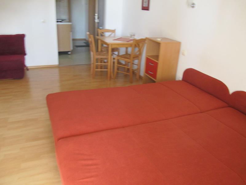 Apartments Slobodan - 92211-A2 - Image 1 - Petrovac - rentals