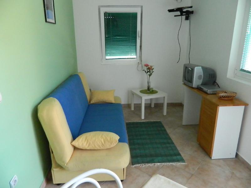 Apartments Savo - 92282-A1 - Image 1 - Rafailovici - rentals