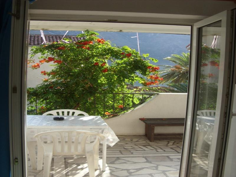 Apartments Srđan - 93052-A1 - Image 1 - Kotor - rentals