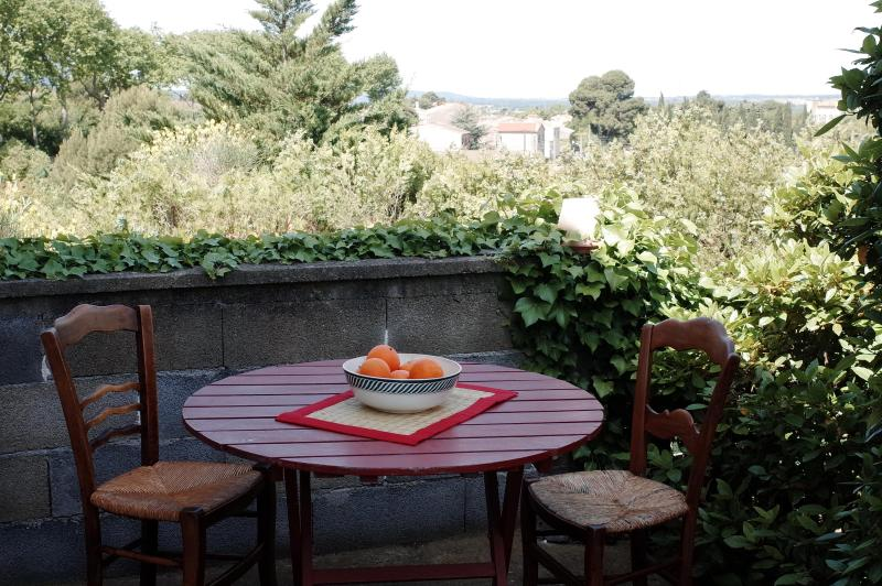 Terrace - House in the heart of Corbieres wine country. - Douzens - rentals