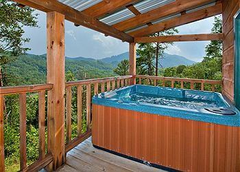 Once in a Lifetime - Image 1 - Sevierville - rentals