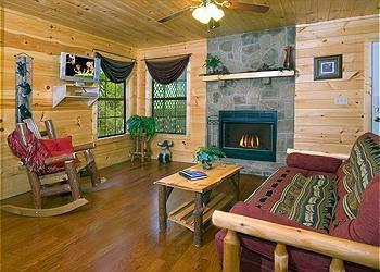 Paradise Cove - Image 1 - Pigeon Forge - rentals