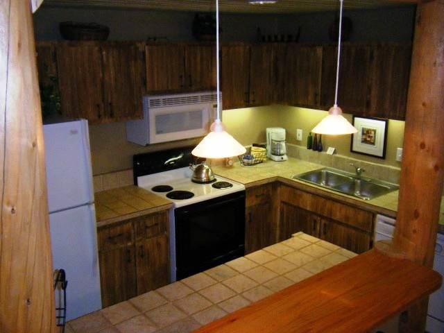 Snowcrest #06 - Image 1 - Crested Butte - rentals