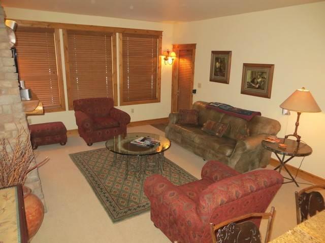 Black Bear #210 - Image 1 - Crested Butte - rentals
