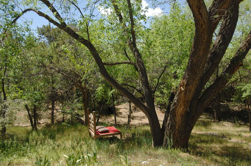 Let the worries of the world go as you bask in the wilds of the acreage. - APPRECIATE HISTORY And LIVE IN LUXURY - Santa Fe - rentals