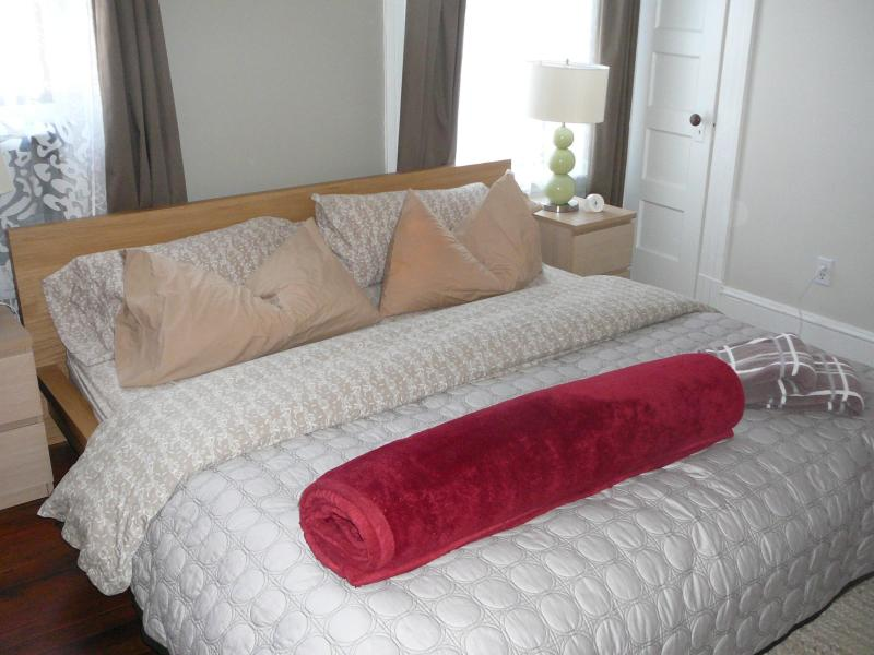 Master bedroom with king size bed - Walk to Metro, Shopping, Restaurants, Sightseeing - Washington DC - rentals