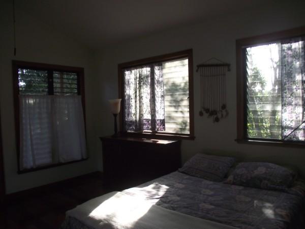 comfort in the tree tops - Sanpopo - San Ignacio - rentals