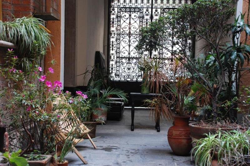The courtyard - El patio 77 - Mexico City - rentals