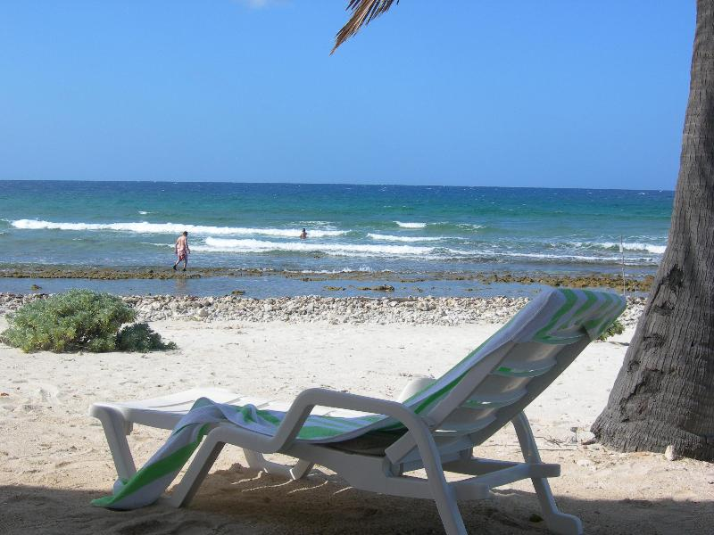 relax in the shade - Cottage on Moon Lane, perched up high, great view - Cayman Brac - rentals
