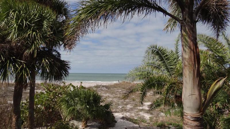 Island Escape - Monthly Beach Rental - Image 1 - Clearwater Beach - rentals