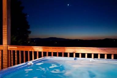 Bear Necessity - Image 1 - Blue Ridge - rentals