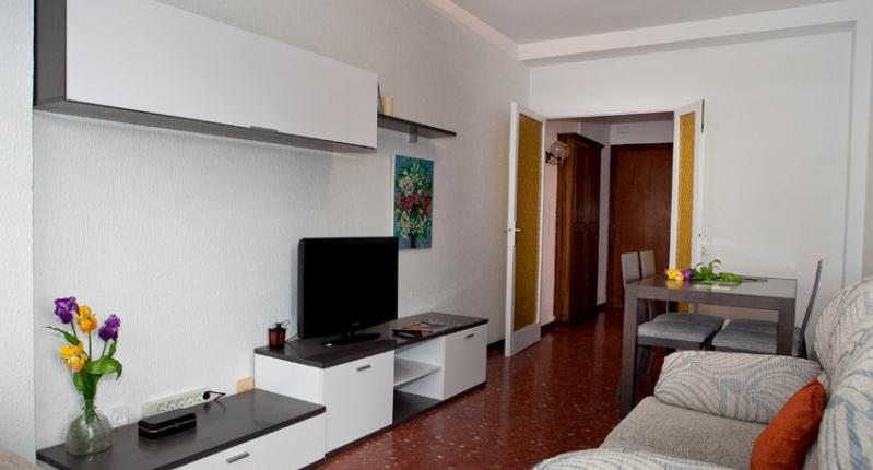 apartamento-en-barcelona---salon-1-793-0.jpg - Spacious Centrico - Barcelona - rentals
