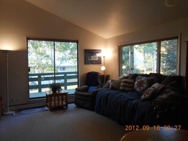 A Great Bargin, New, FP views .03 mile to gondola - Image 1 - Steamboat Springs - rentals
