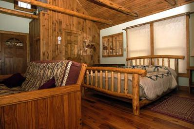 TreeHouse cabin with Views Overlooking the Valley! - Image 1 - Hot Springs - rentals