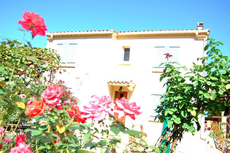 la Maison Grande - Maison JARDIN Spacious 3 bed ecclectic house - Limoux - rentals