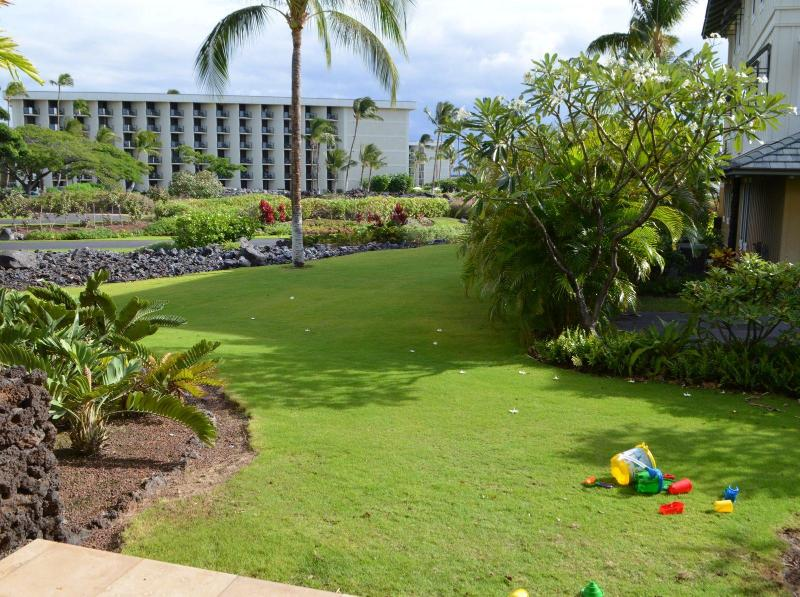 Large grassy area for kids to play on! - 2-3 minutes walking distance to the Beach - Waikoloa - rentals