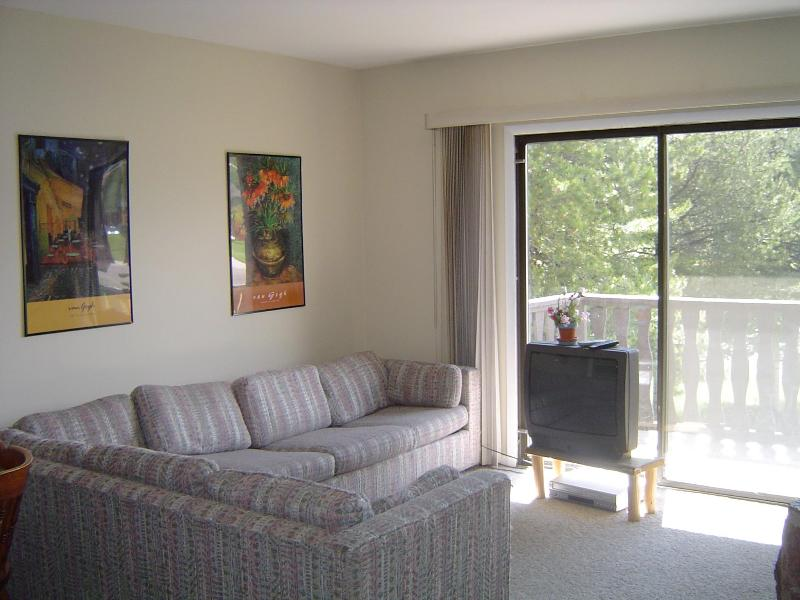 Living Room - Meadowridge - Close to skiing - Bring the Family! - Fraser - rentals