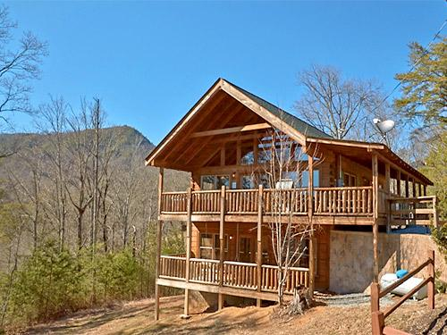 A Bear's View - Image 1 - Sevierville - rentals