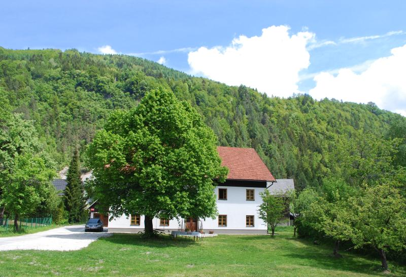 Country House Trata - Studio apartment 2-4 persons - Image 1 - Kranjska Gora - rentals