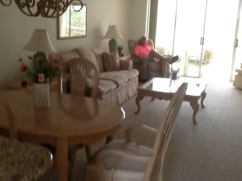 View from kitchen - Plantation G&CC condo overlooking 10th Fairway - Venice - rentals