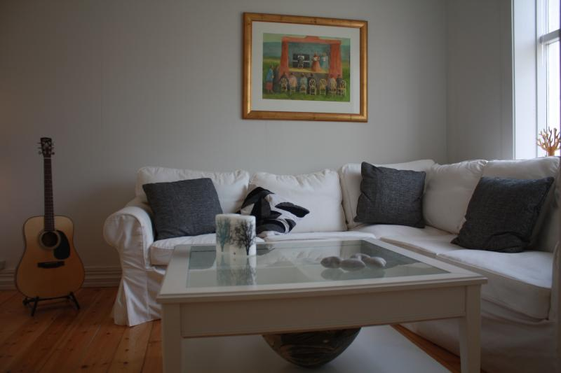Living room - Beautiful Reykjavik center apartment best location - Reykjavik - rentals