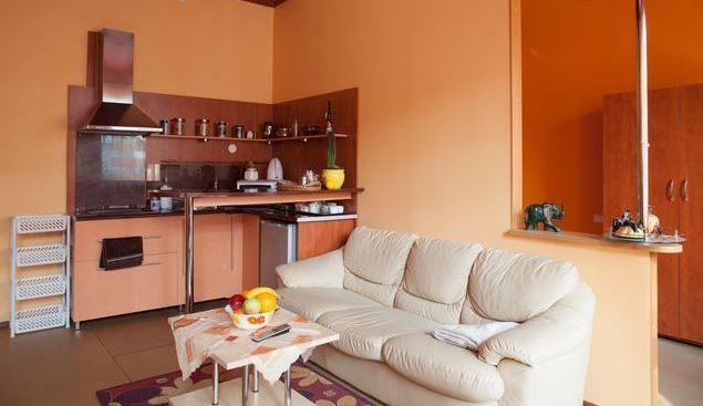 Cosy studio in the very city center - Image 1 - Kaunas - rentals