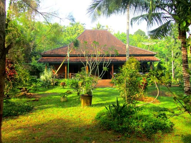 The Villa - House of the Swaying Palms - Trenggalek - rentals
