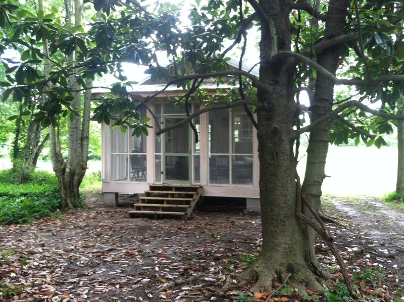 Back of house - Charming cottage in the Mississippi Delta - Clarksdale - rentals