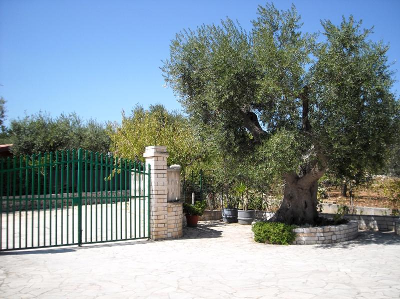 Entry - Stunning villa close to the sea - Castellana Grotte - rentals