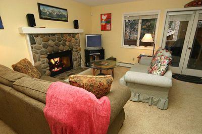 Cozy Living Room - McCloud 255 - Incline Village - rentals