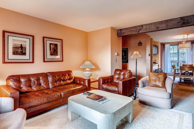 Riverview 22 - Image 1 - Aspen - rentals
