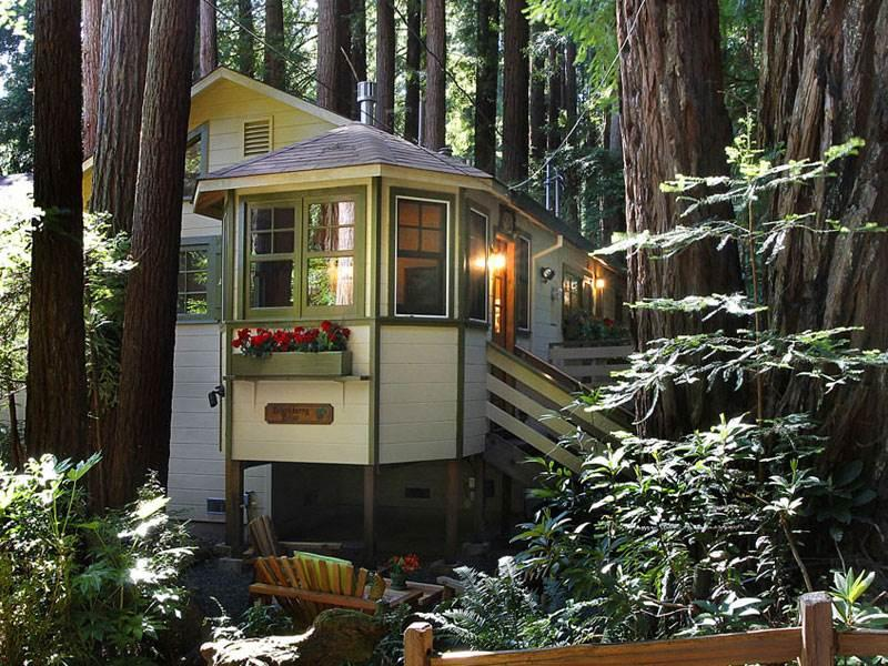 BLACKBERRY BLISS - Image 1 - Cazadero - rentals