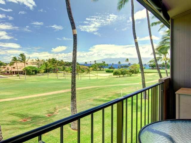 Maui Eldorado Resort A208 - Image 1 - Ka'anapali - rentals