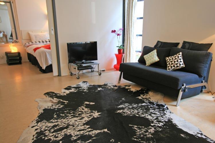 The Rabbit Street Apartment - Image 1 - Amsterdam - rentals