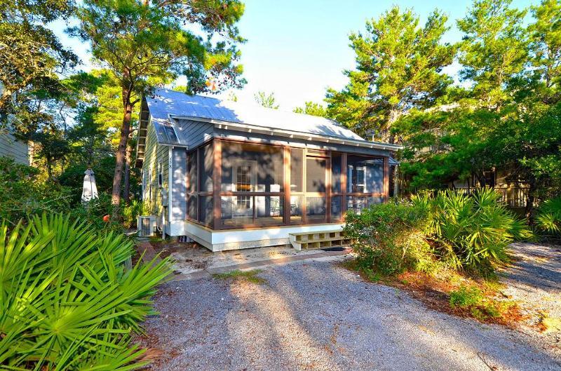 Palmetto Cottage - Image 1 - Seagrove Beach - rentals