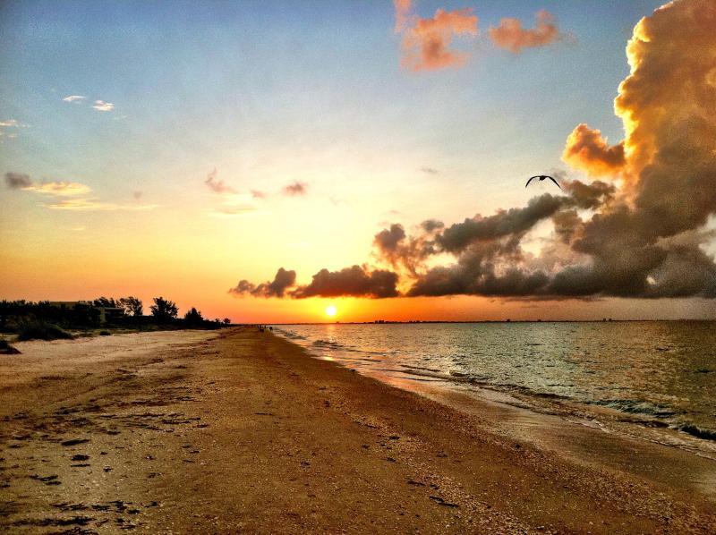 Sanibel Island Florida - Image 1 - Sanibel Island - rentals