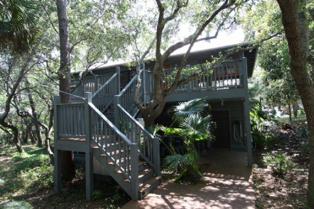 Up a Tree - Old Seagrove Beach Near Seaside - Up a Tree - Seagrove Beach - rentals