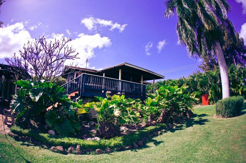 What a spot! - Bamboo House - Waialua - rentals