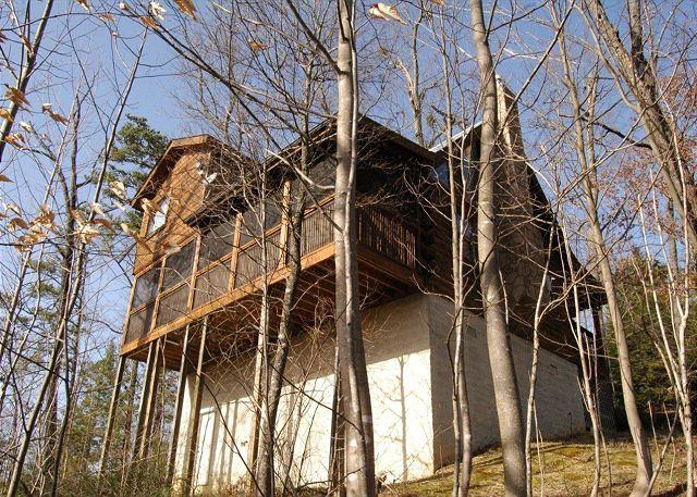 Top of the World #201- Outside View of the Cabin - 2 Bed Pet Friendly Cabin, 6 miles to town Gnatty Branch Village Pigeon Forge - Sevierville - rentals