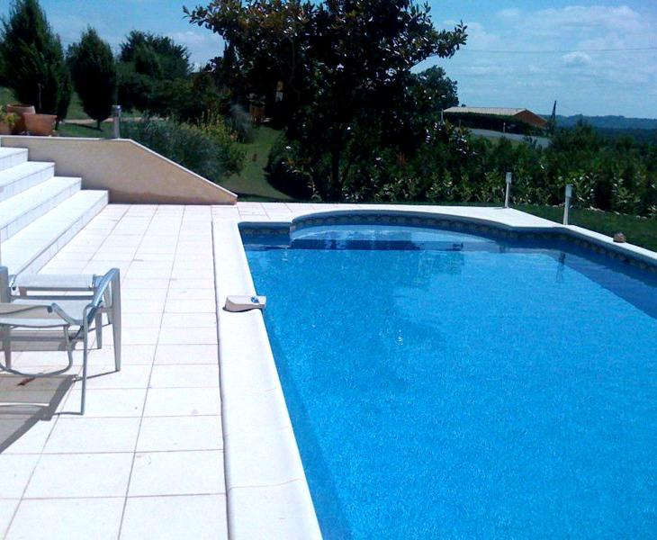 Beautiful house with pool set in its own grounds - Image 1 - Plazac - rentals