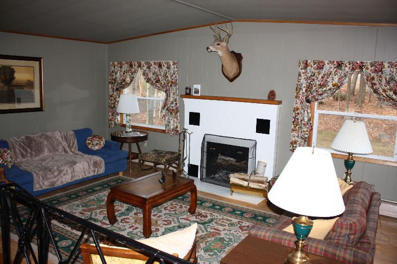 Pinewoods Cabin, Lake Pleasant beach access - Image 1 - Speculator - rentals