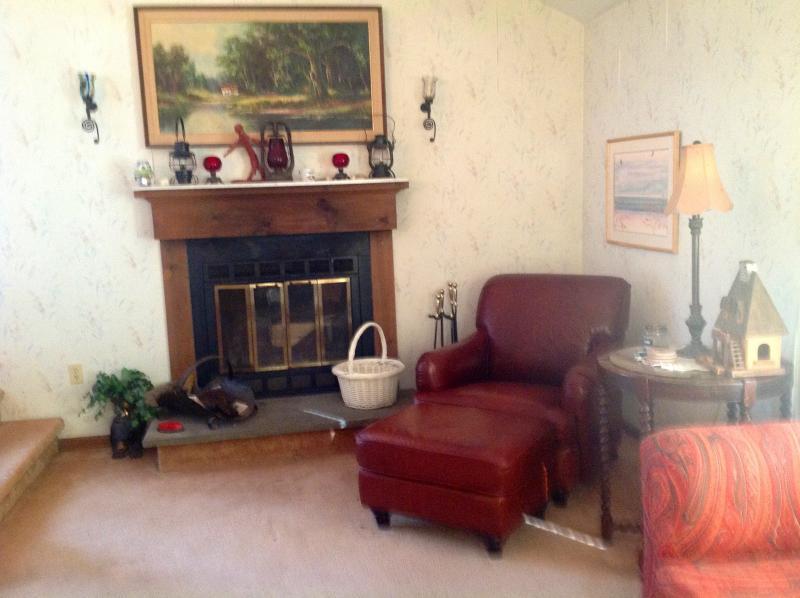Spacious getaway home - Image 1 - Lackawaxen - rentals