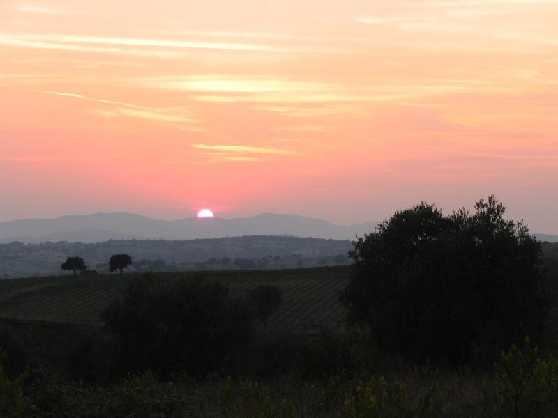 View from the terrace - Idyllic Villa sought after location picture perfect vistas over Tuscany - Tuscany - rentals