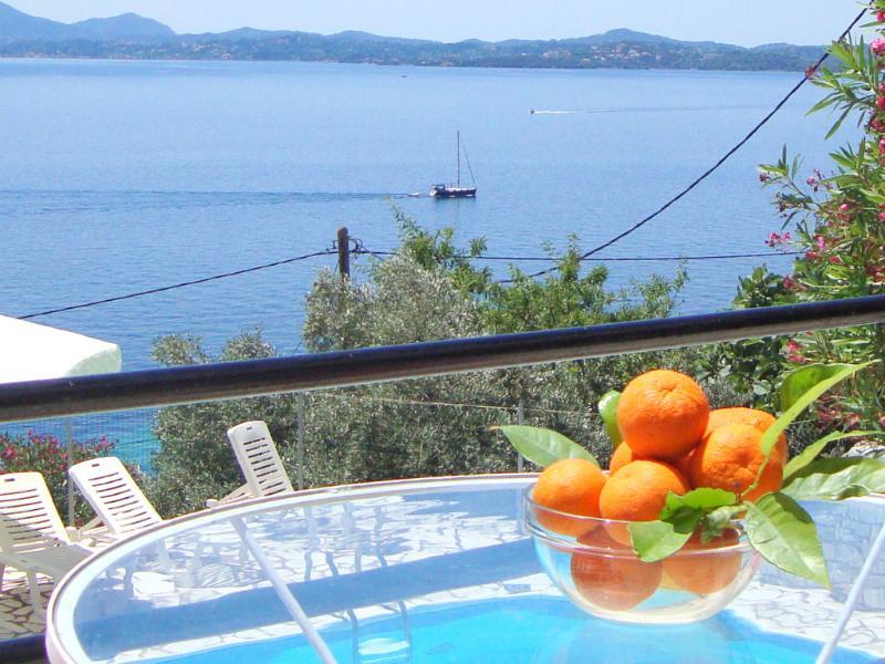 The Sea view from dining terrace. - Very private  family  villa in Ionian Islands Corfu/Greece - Barbati - rentals