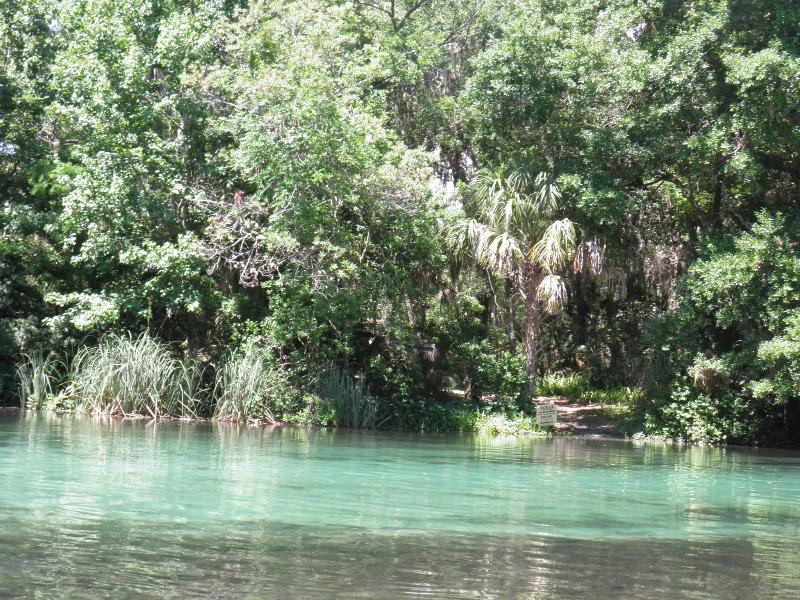 Weeki Wachee River - Sunny Coast - Spring Hill - rentals