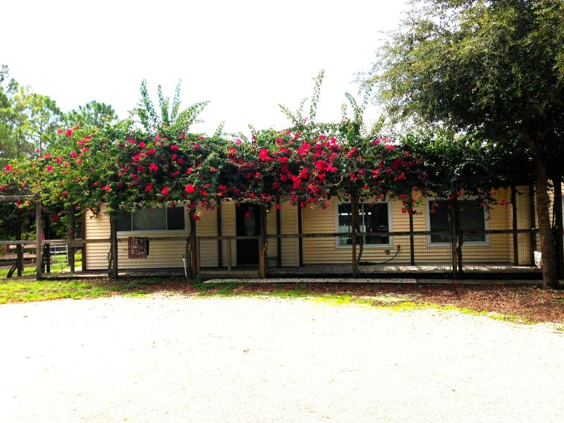 Front of Home - 4 Bedroom 2 bath ranch home on 30 acre horse farm in Naples - Naples - rentals