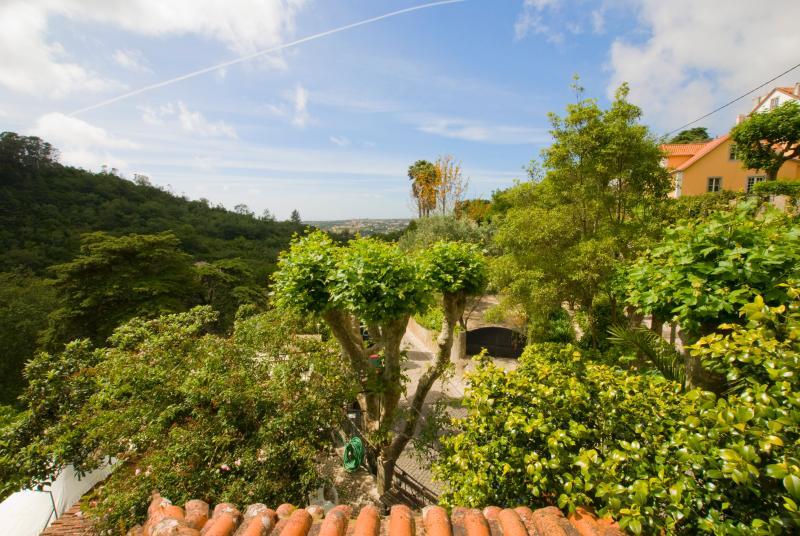 Sintra Town Centre - Wonderful Views ! - Image 1 - Sintra - rentals