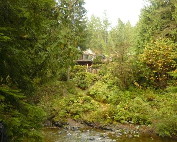 The Sanctuary from the river - Eaglenest Sanctuary - Shawnigan Lake, BC - Shawnigan Lake - rentals